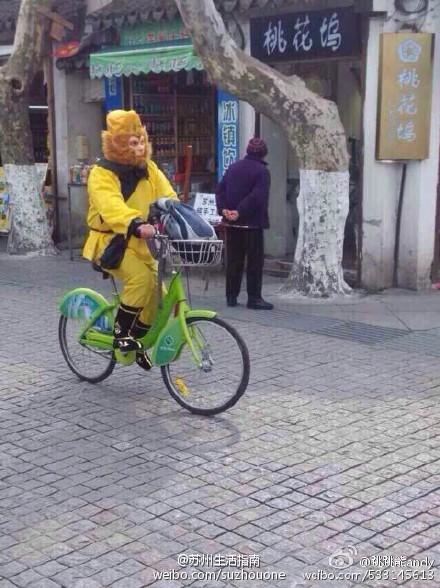 大师兄出现在苏州 骑着自行车低碳出行图片