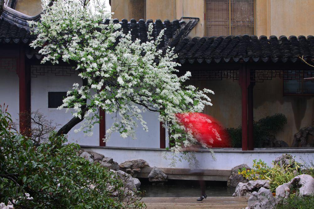 风雨雕花楼